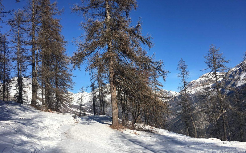 en pleine montagne, dans la neige
