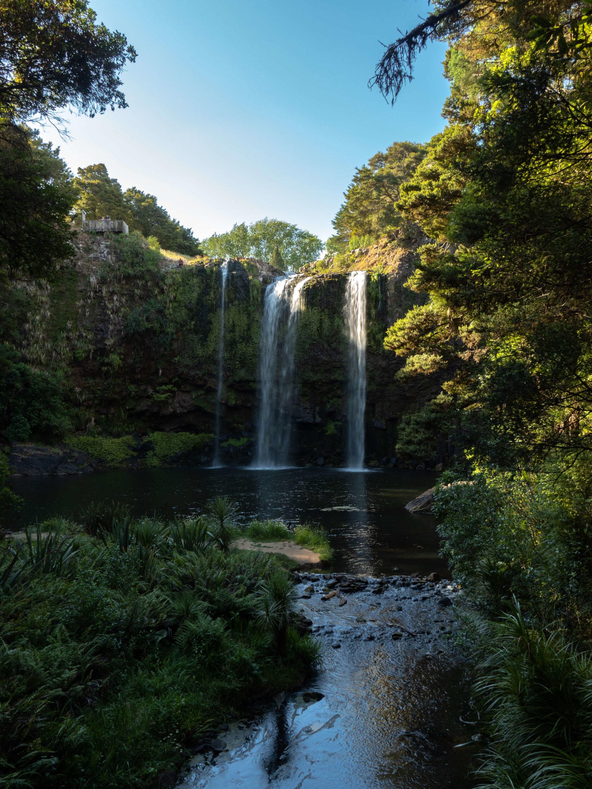 Whangarei Water Falls