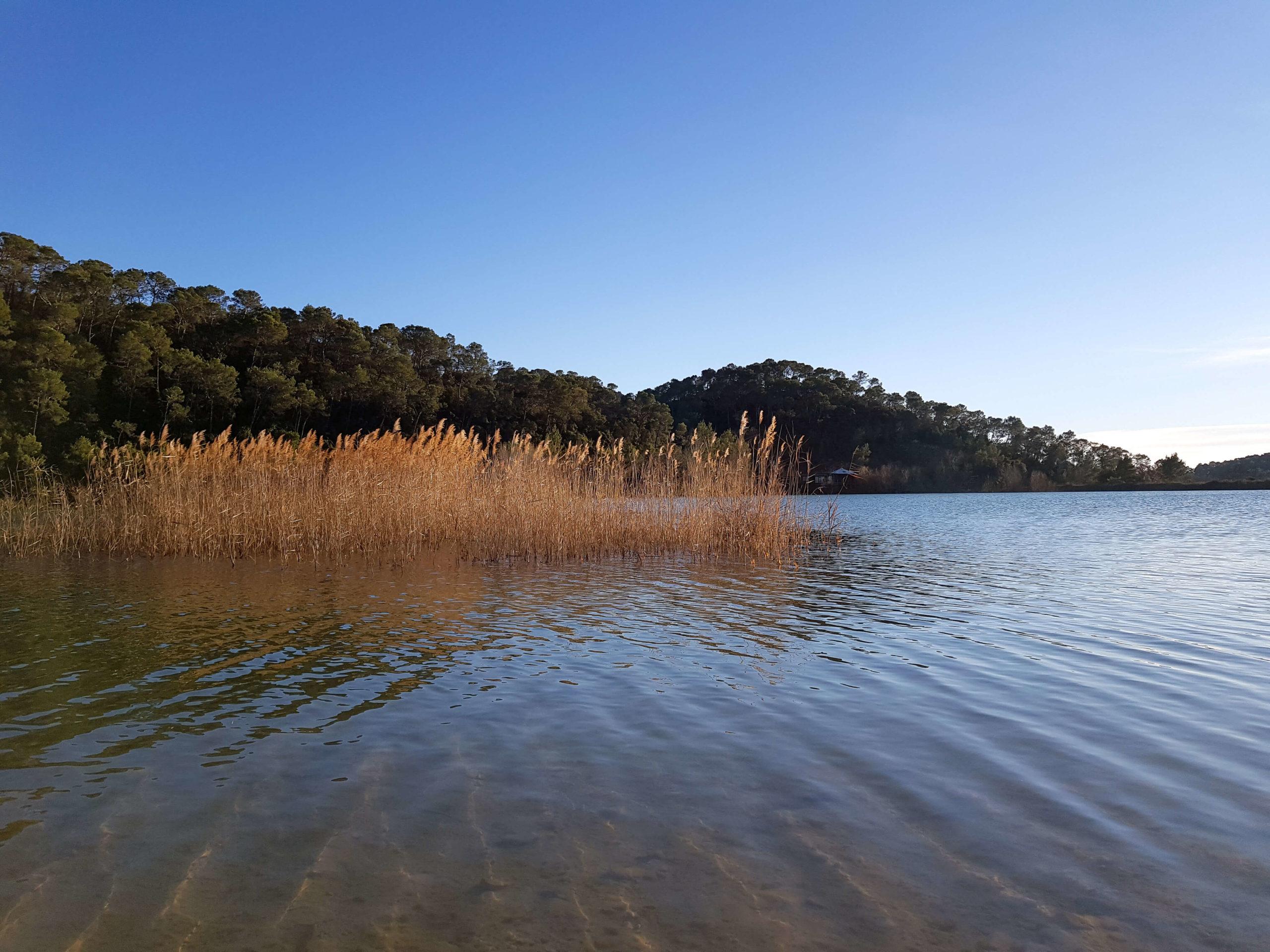 lac de cécélès hérault