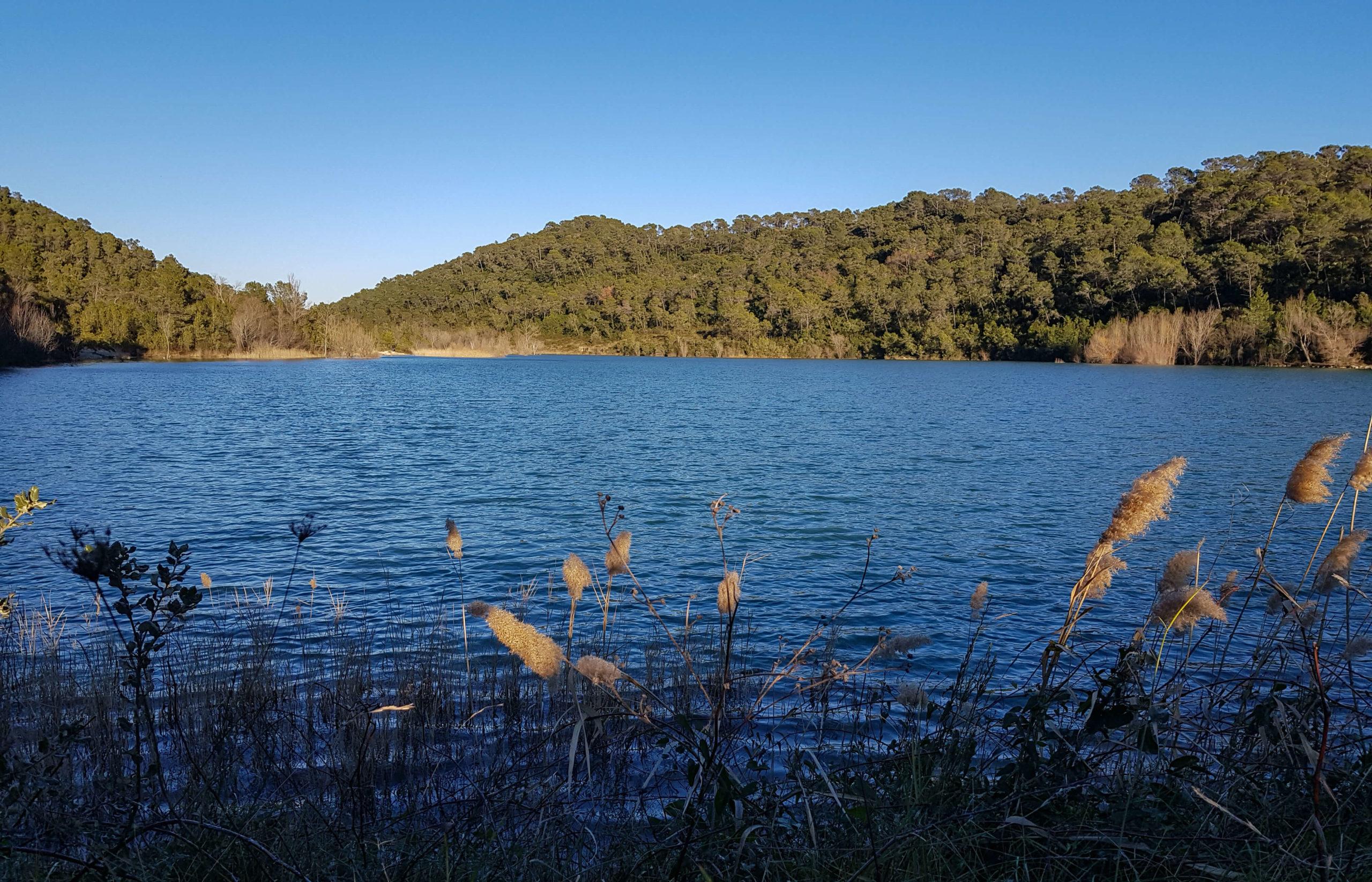 Lac de Cécélès : balade et sérénité à deux pas de Montpellier