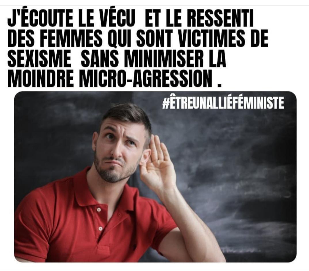 #êtreunalliéféministe meme meuf cocotte