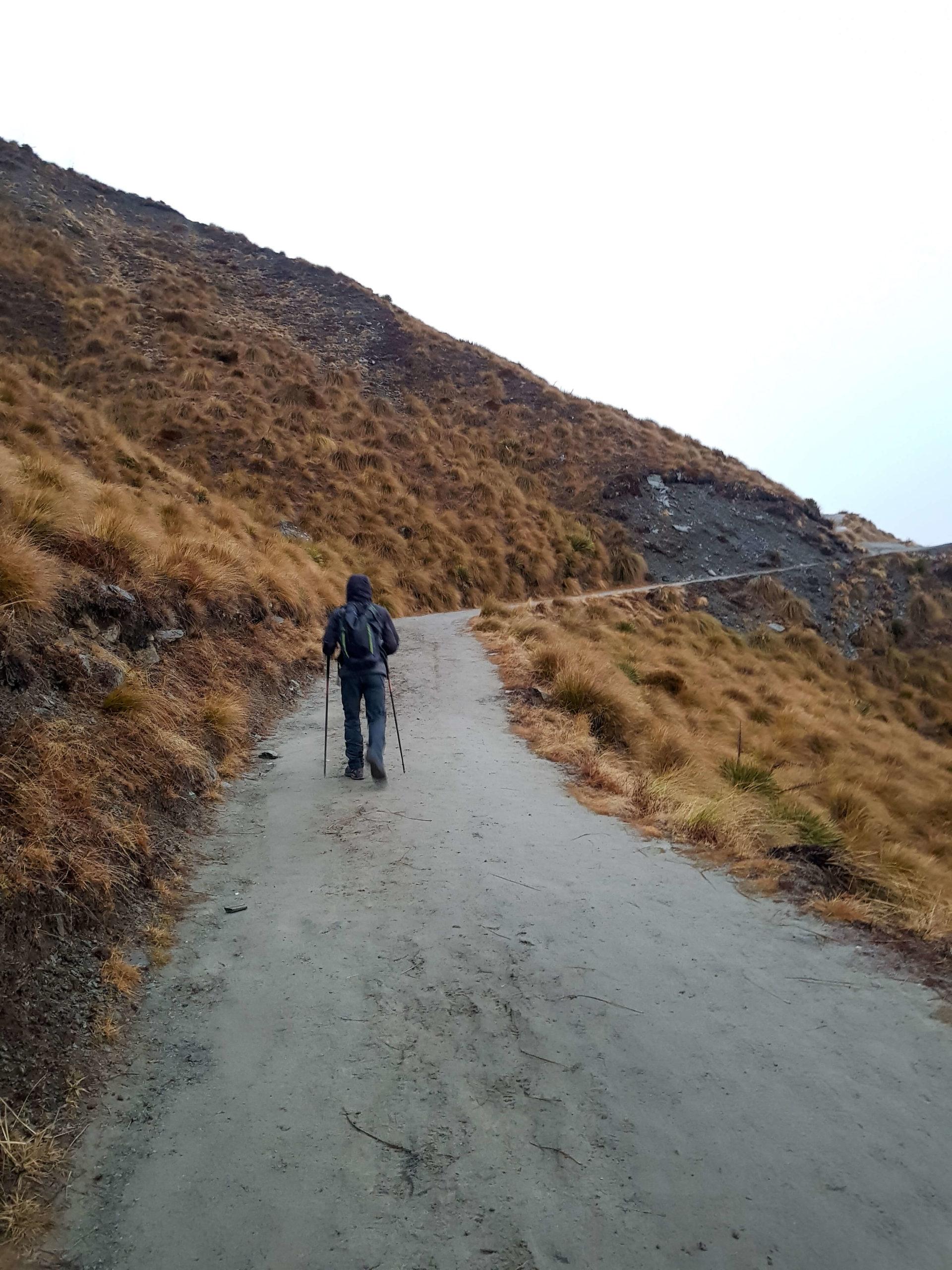 Marcheur sur le chemin du pic de Roy Nouvelle-Zélande