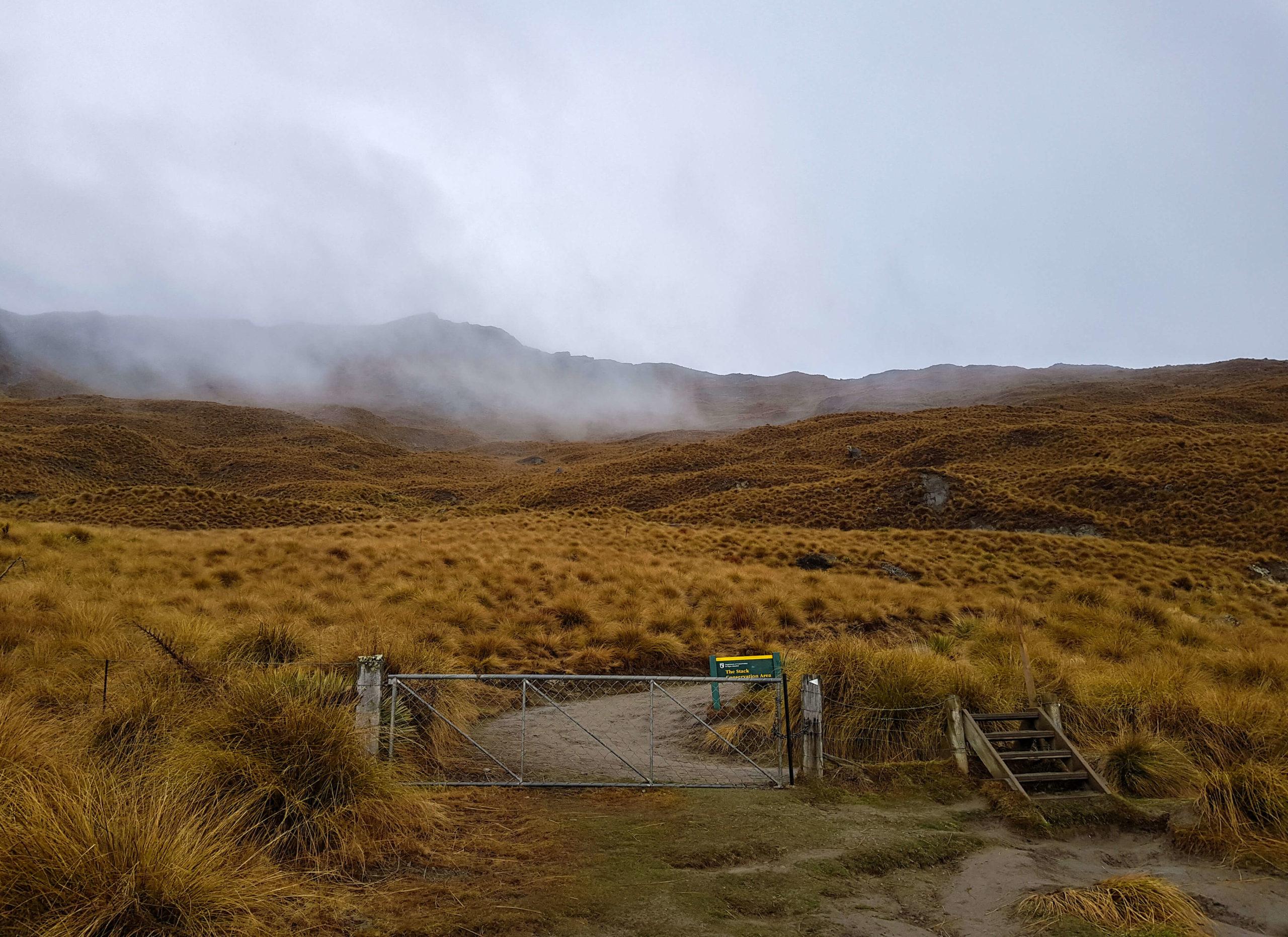 Sentier de randonnée du Roys Peak