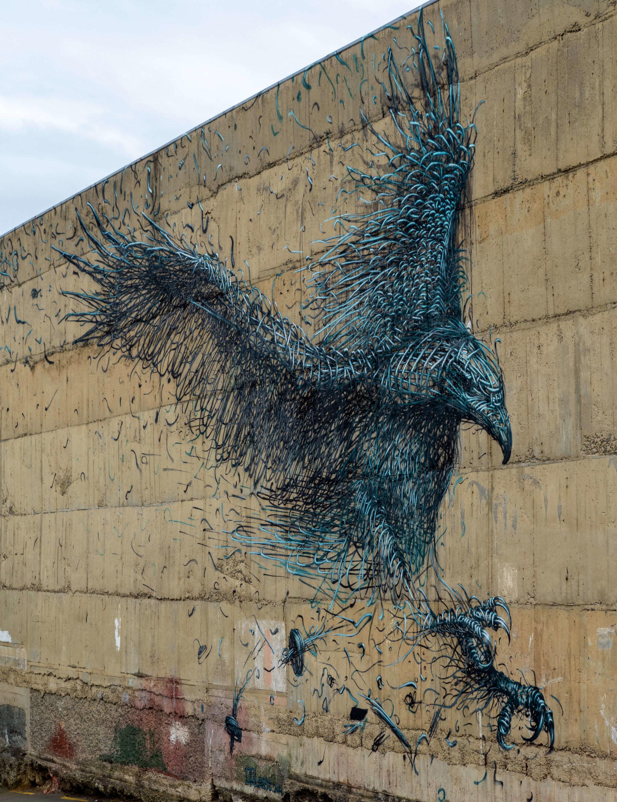 Aigle street art trail Dunedin