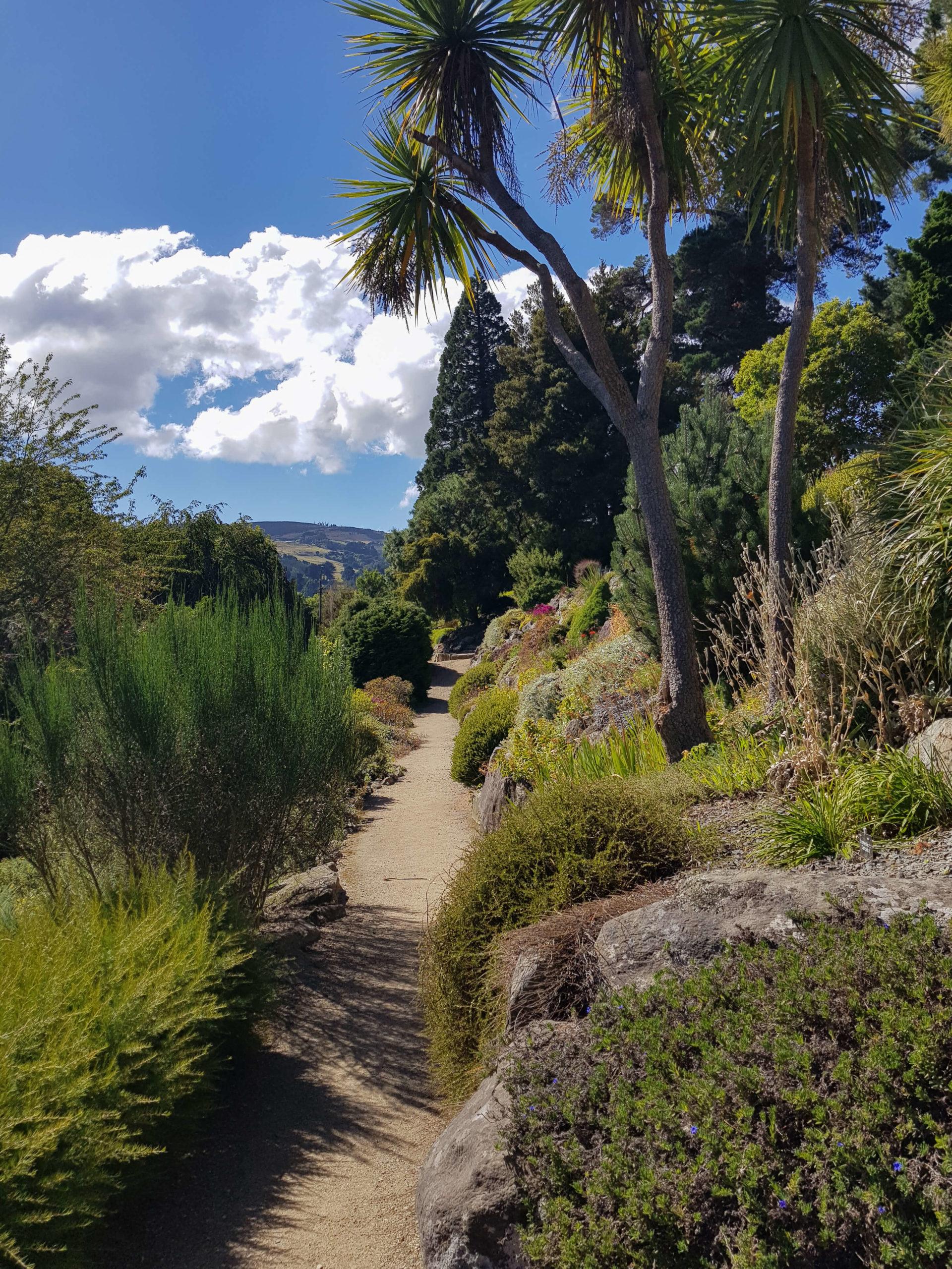 Dunedin jardin botanique