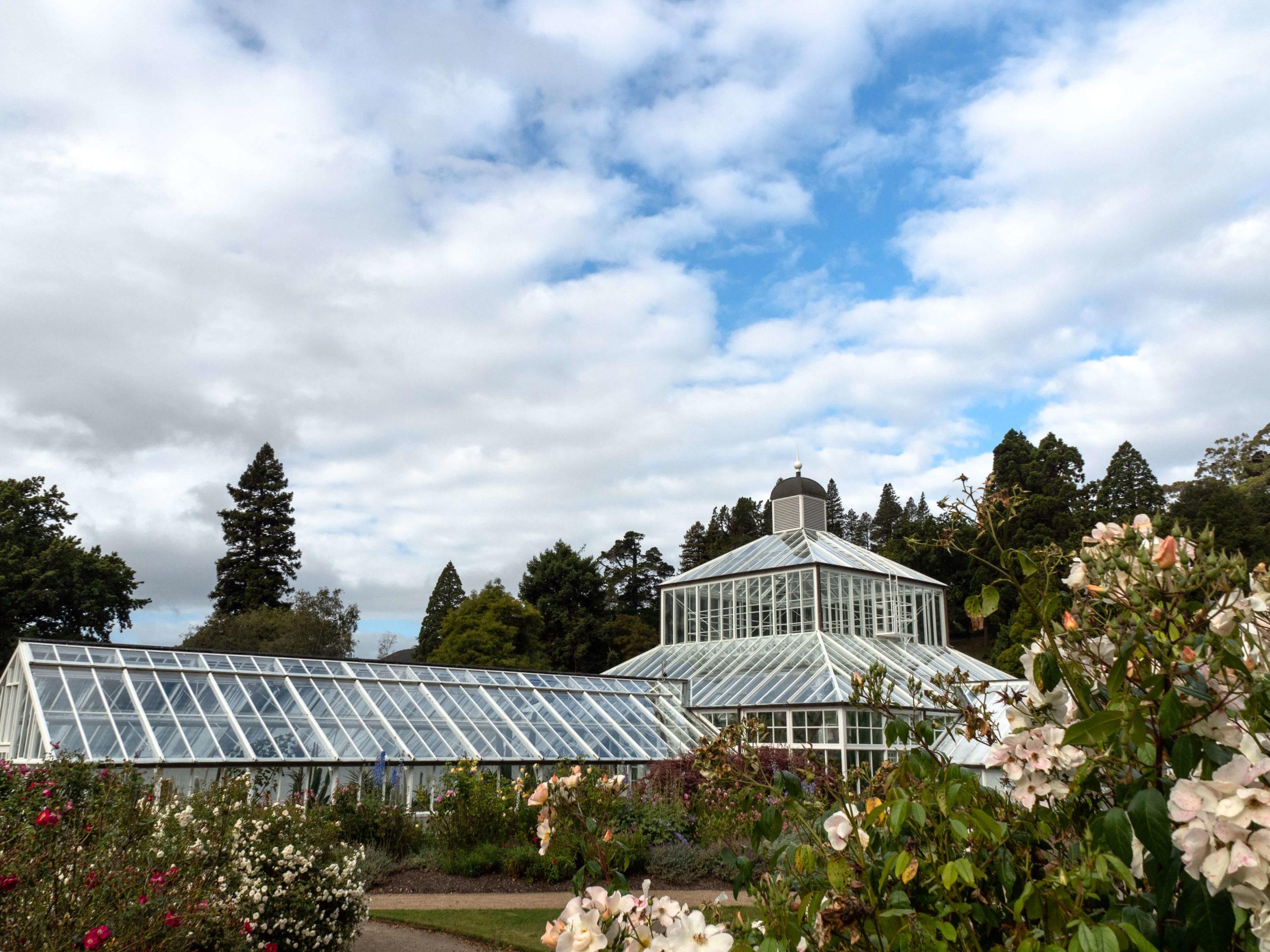 Jardin botanique Dunedin