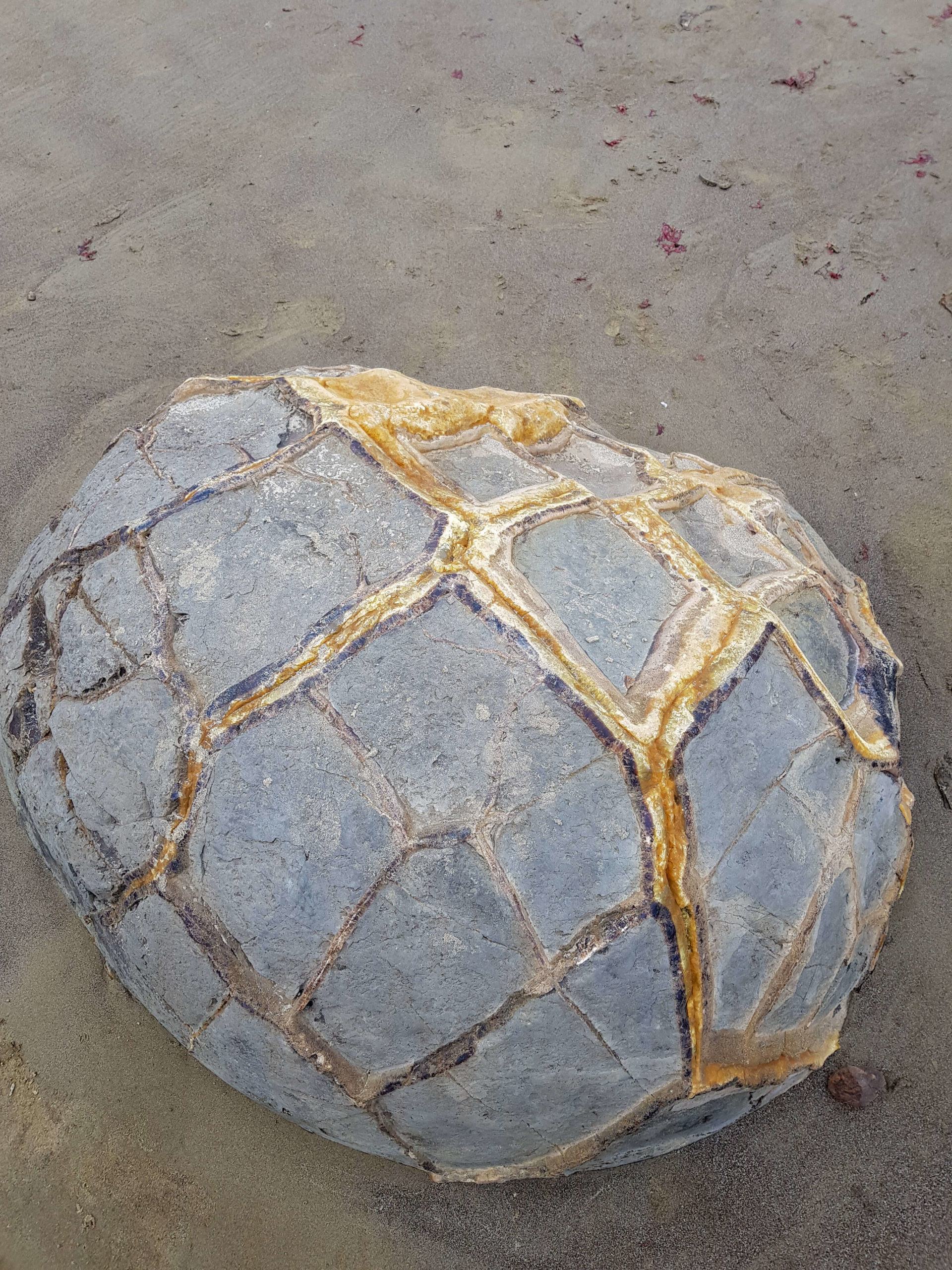 Moeraki boulders rocher Nouvelle-Zélande