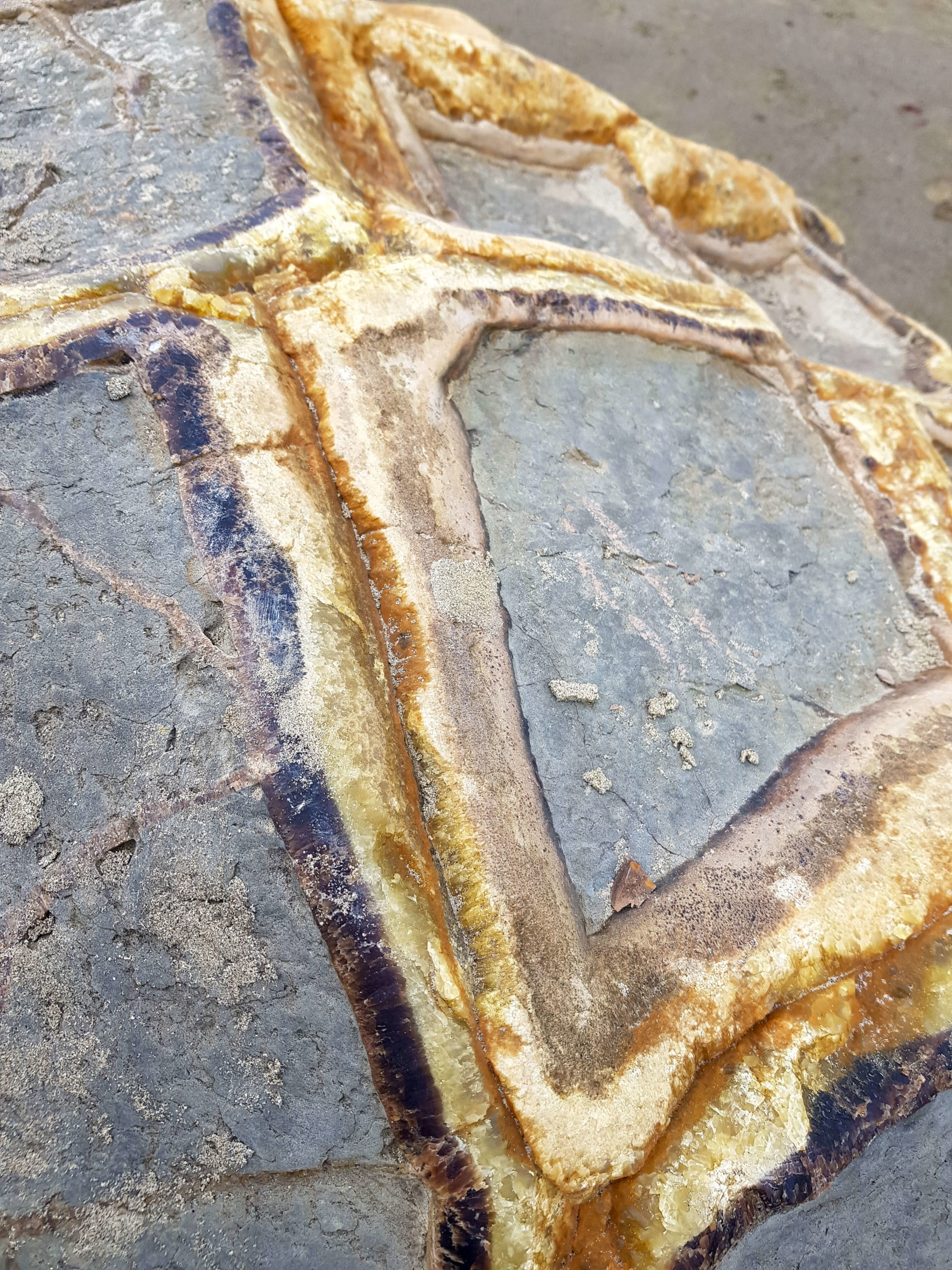 Moeraki boulders rocher close-up Nouvelle-Zélande