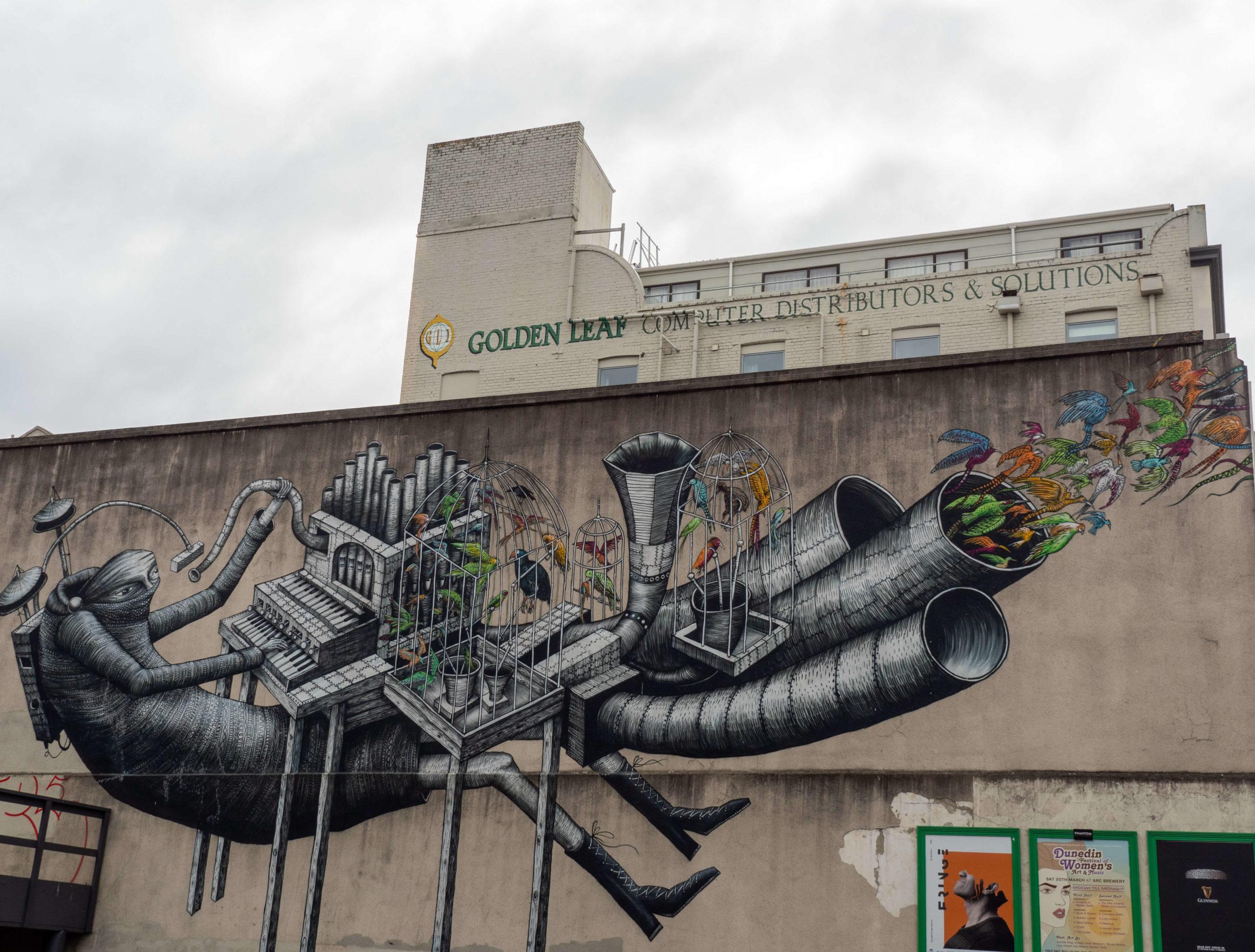 Musicien et oiseaux street art trail Dunedin
