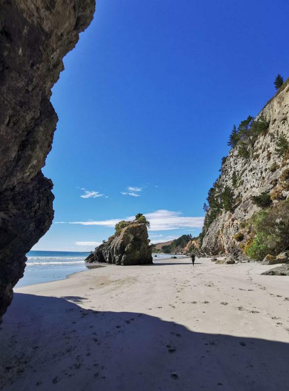 Meeriwild sur la plage de la cave naturelle Waitati Nouvelle-Zélande