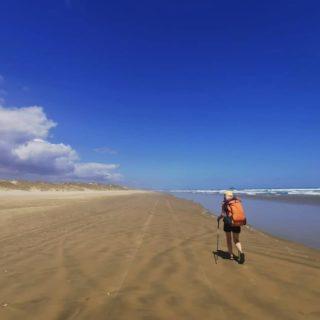 Du sable, la mer et des chevaux - Voilà le programme pour nos 3 derniers jours sur la 90 mile beach. - Le premier jour nous n'avons croisé pratiquement personne, uniquement des pêcheurs.euses. Au matin suivant, nous avons été réveillé par un poulain et sa maman qui broutaient à 10m de nôtre tente 😶. Plus tard dans la journée nous avons vu plusieurs troupeaux de chevaux sauvages au cœur des dunes 🐎 - Au fil des km parcourus, nous avons peu à peu croiser plus de gens (famille de surfers et pêcheurs.euses), pour finalement retrouver la civilisation le dernier jour à Ahipara. - Retrouver les quads, motos, et voitures n'a pas été la chose la plus simple je dois dire 😅. Après avoir uniquement eu le son de la mer et des animaux, avoir à nouveau ces bruits autour de nous s'est avéré assez déstabilisant 😶. - La 90 mile beach a été une grosse étape. On a eu du très bon, et du moins bon en chemin. Mes pieds n'ont pas été sans peine avec des ampoules et une réaction allergique au soleil malgré la crème solaire 😪. Passer d'un sable aussi dur que la route à du sable mou n'est pas non plus facile 😅 Ça ralentit l'allure, surtout avec des sacs de + de 10 kg. Mais nous l'avons fait 🙌🏻 • 🇳🇿 in comment 👇🏻