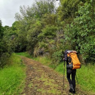 """La forêt 🌲 - Nous revoici sur le chemin de la Te Araroa (du moins en photos et vidéos 😬) Première forêt, la Raetea, qui part de Kaitaia pour rejoindre Mangamuka. - Nous avons pris le temps le premier jour une fois au camp pour papoter avec le propriétaire (un français 😄 Sylvain si tu passes par là 👋🏻). On est reparti le lendemain car une grosse pluie était annoncée. On souhaitait rallier la ville avant. - On a fait la moitié de la marche au sec. Une fois au sommet il a commencé à pleuvoir et on a fini les pieds trempés. Pas génial de base, je vous laisse imaginer mon état avec mes ampoules à chaque pied 😪. Pourtant je n'avais pas eu mal de la journée grâce à la laine que @mawou_deur m'avait conseillé de prendre. Elle n'a pas résisté dans mes chaussures ... en même temps nos pieds faisaient """"floc floc"""" à chaque pas 😅😆. Comment voulez vous ? - Nous sommes arrivé.e.s de l'autre côté de la montagne à 20h30. Au campsite il devait y avoir une caravane sur place pour qu'on se mette au sec, manque de chance, plus de caravane. Nous voilà donc à la nuit maintenant, à marcher, tentant de trouver un abris avec moins de 10 maisons à la ronde ! - Prenant nôtre courage à deux mains, on se décide de grimper l'allée d'une maison où nous voyons de la lumière. Nous sommes tombé.e.s sur la sœur d'une des personnes qui gère la radio de la ville. Or iels sont en train de construire des chambres pour backpackers 🙌🏻 - Moyennant une koha (donnation en Maori) nous avons pu passer une nuit au sec, dans un lit et boire un thé/café chaud le lendemain matin avant de repartir ! Je ne vous explique pas nôtre soulagement quand nous nous sommes enfin couché.e.s ce soir là. Eh bien mes ami.e.s ! Bien nous en a prit car le lendemain, une pluie diluvienne tombait sur la ville de Mangamuka ! - La suite au prochain post 🤗"""